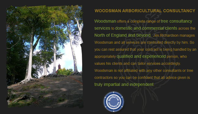 Woodsman Arboricultural Consultancy Introduction